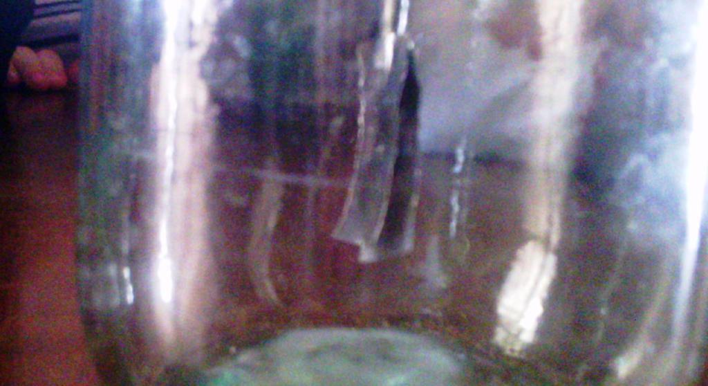 zanimatelye-opyty-ro-fizike-eksperiment-svoimi-rukami-05